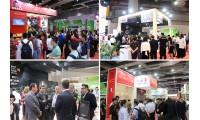 2020上海国际火锅产业博览会强势来袭,引领火锅发展风向标